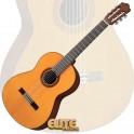 Guitarra Yamaha CG162C/S