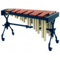 Soloist 2MBJ2APV30 3 oct. (junior)