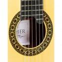 Luthier Exótico